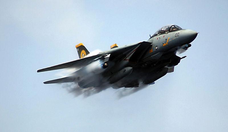 Image result for Grumman F-14A Tomcat