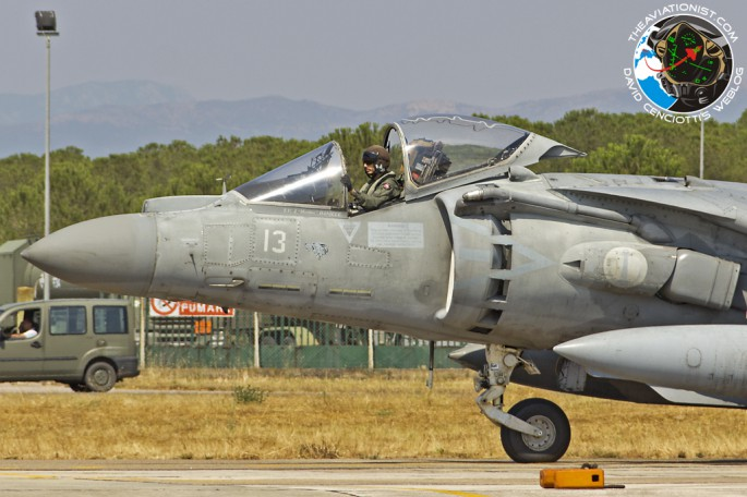Harrier in Deci_05