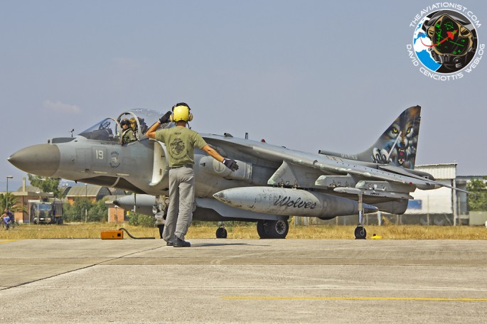 Harrier in Deci_06