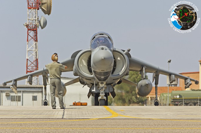 Harrier in Deci_08