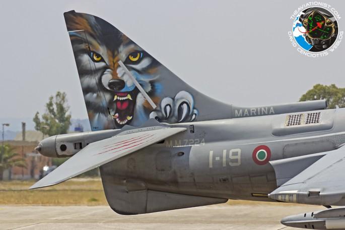 Harrier in Deci_14