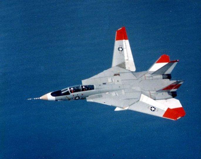 Fotos de F-4 Phantom y F-14 Tomcat  volando con las alas plegadas F-14-asymmetric