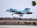 A-18C. NSAWC. NAS Fallon. 03.02.2014 land