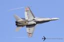 Swiss AF Hornets